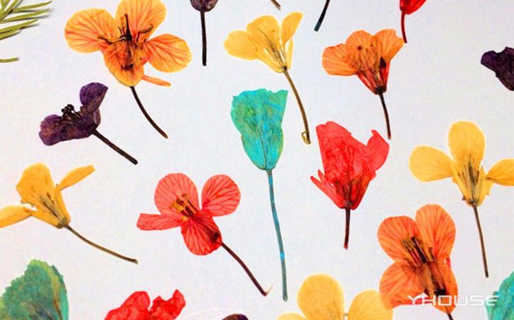 聚绘DIY艺术工作室 创意精致压花体验课