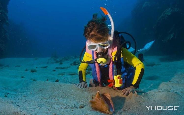 不用出海 也可以体验潜水的乐趣
