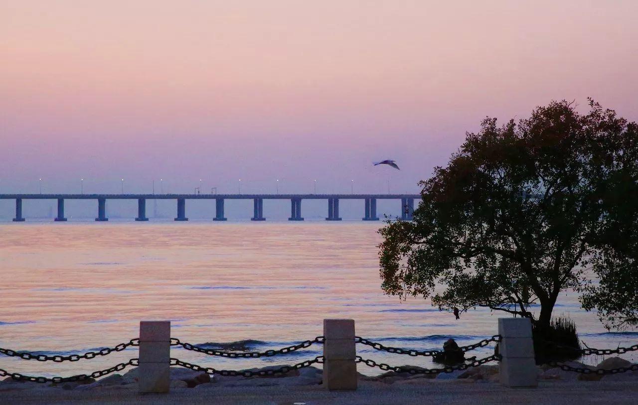 海边风景钢琴图片