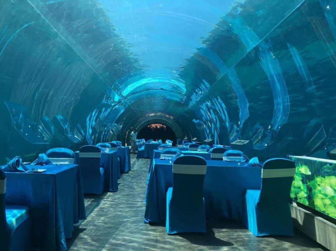 在三亚海棠湾洲际酒店的特色海洋餐厅内设有海洋馆常见的透明海底隧道
